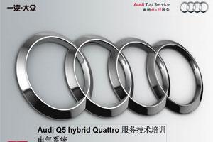 2013款奥迪Q5 Hybrid_电气系统手册下载